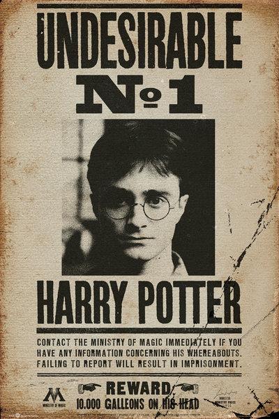 Harry Potter Wanted - Plagát 61x91,5 cm