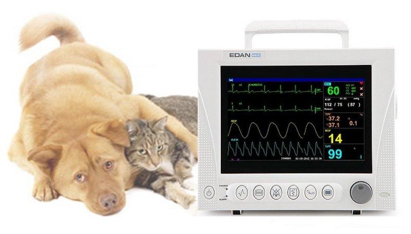 Kardiomonitor Эдена с kapnografem, ветеринарный