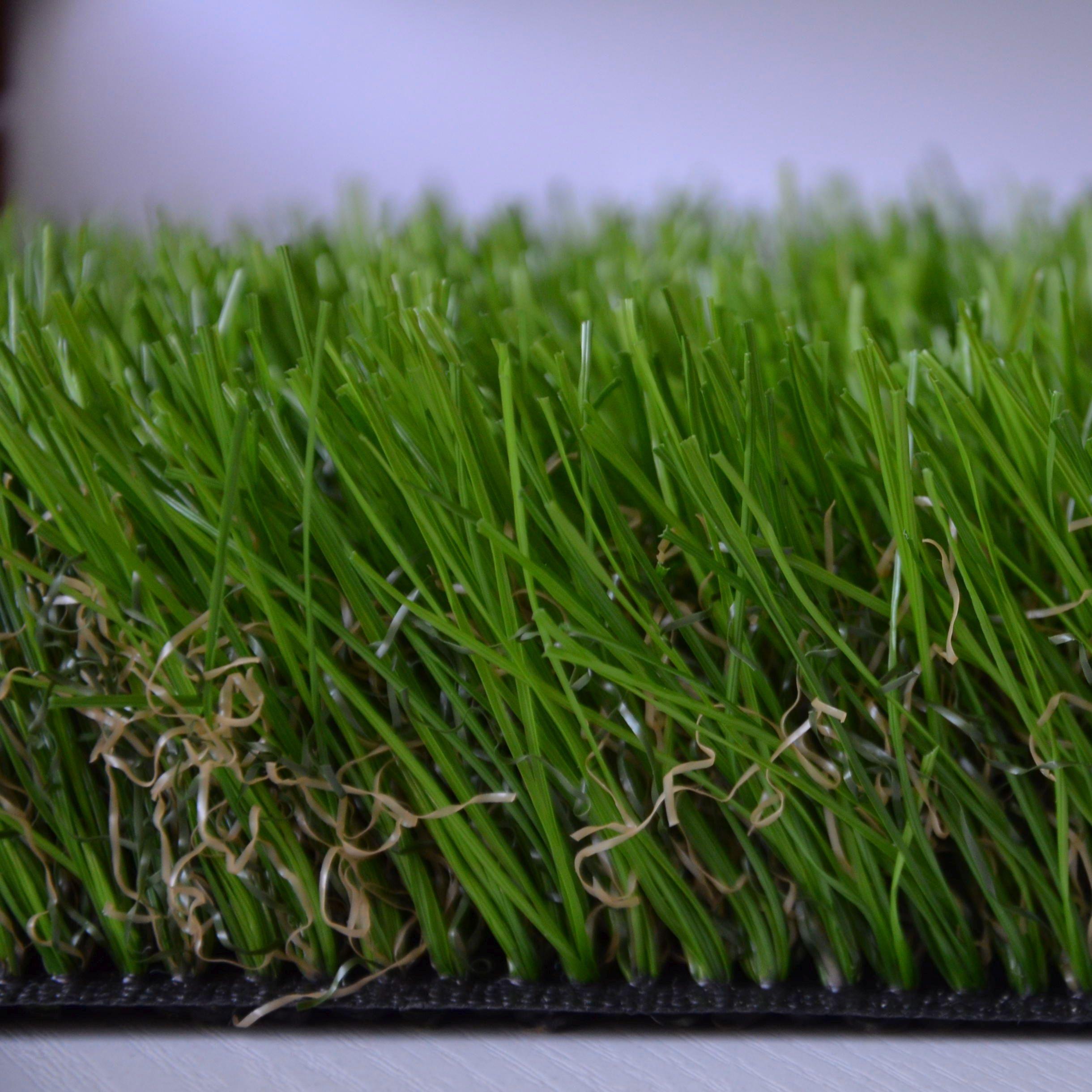 Taliansky bylina OMEGA 60 mm premium 400x600cm!