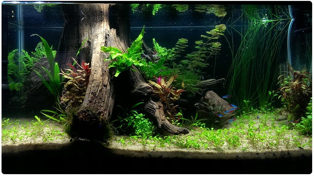 фон из ткани для аквариума любой