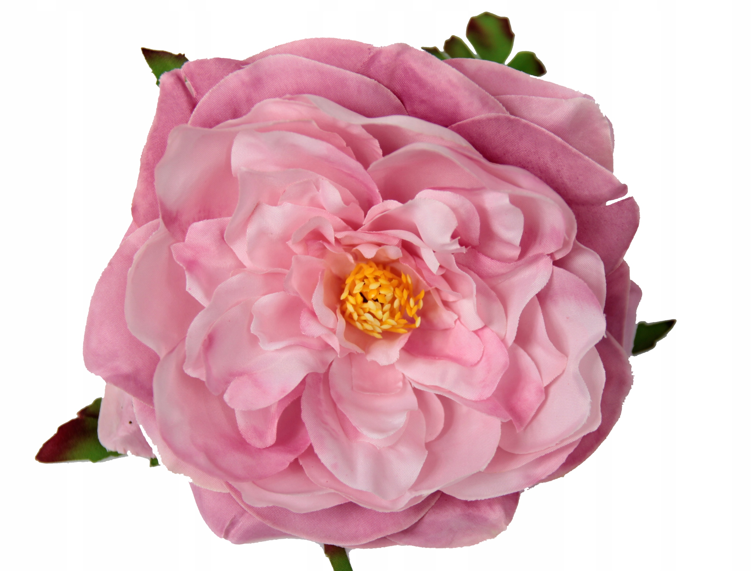 Peonia Piwonia Glowka Wyrobowa Sztuczne Kwiaty Fa 8529430930 Allegro Pl