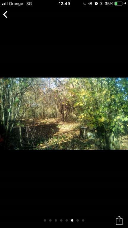 Działka budowlana las łąka lubelskie