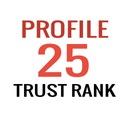 POZYCJONOWANIE SEO - Linki Trust Rank 25 x TF70