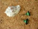 Kolczyki Zielone Kokos Howlit Masa Perłowa Jadeit