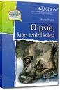 Über den Hund fuhr, die durch die Schiene/ROMAN PISARSKI - 30 %