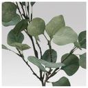 Икеа SMYCKA искусственный лист, эвкалипт, зеленый