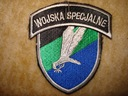 Naszywka Wojska Specjalne