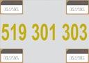 -- 519 301 303 -- ZŁOTY NUMER ORANGE, F. VAT 23%