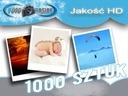 wywoływanie zdjęć1000 szt. 10x15 FUJI