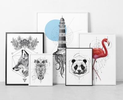 Plagáty, obrazy, plameniakov, sada 3 harmonogram 40x50 cm