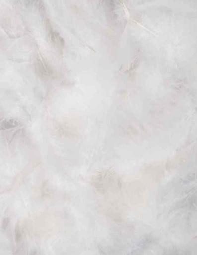 Pióra Piórka Dekoracyjne Białe