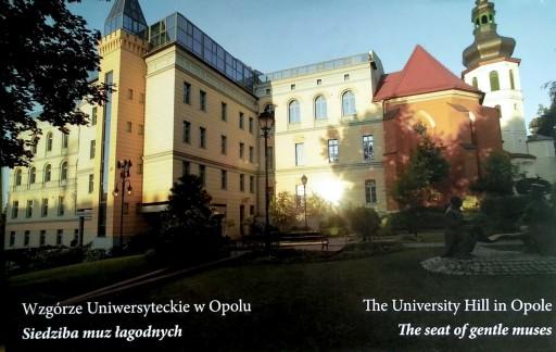 Nicieja, Wzgórze Uniwersyteckie w Opolu