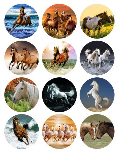 Oplatek Na Muffinki Konie Koniki Kon Horses 12szt 7429999286 Allegro Pl